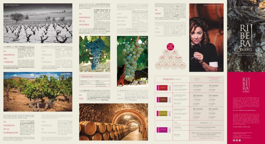 mapa de la ribera del duero, zona de excelentes vinos