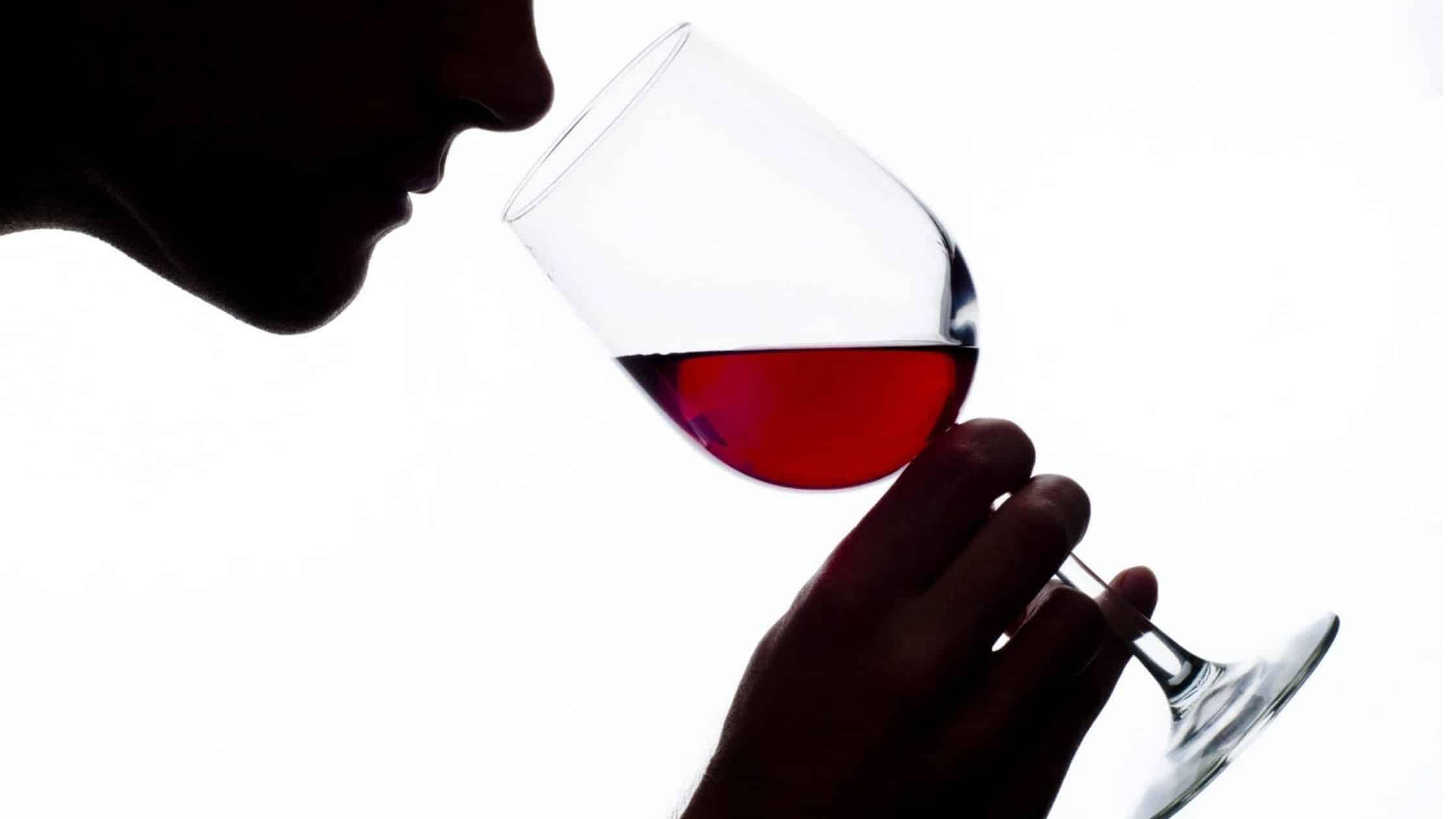 Olor y sabor y como degustar el vino